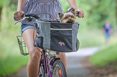 Fahrradkörbe für Hunde