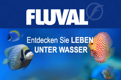 FLUVAL Online Shop