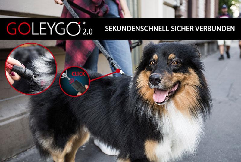 GOLEYGO 2.0 Hundeleinen