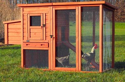 Hühnerställe Online Shop