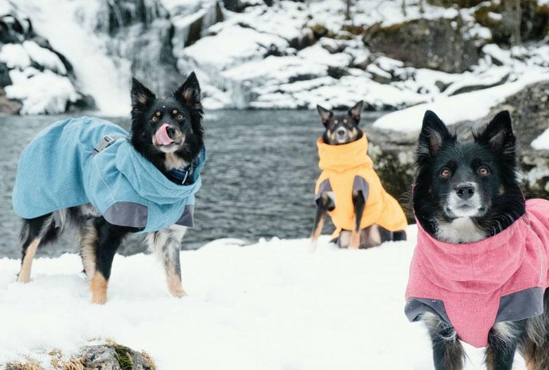 Warme Hundemäntel