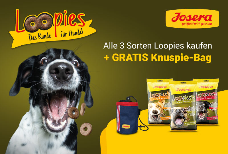 AKTION: 3x Loopies + Leckerlibeutel GRATIS
