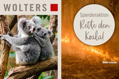 Rette den Koala - Spendenaktion