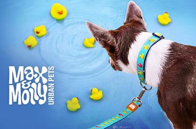 Max & Molly Hundehalsbänder aus Neopren