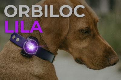 Orbiloc Dog Dual Safety Light Hundelichter