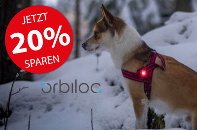 Orbiloc Safety Light