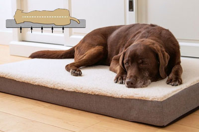 Orthopädische Hundebetten