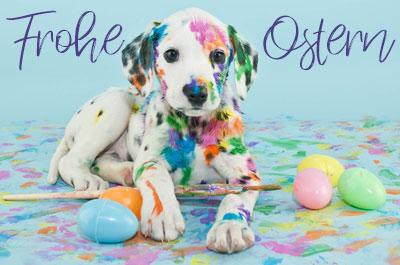 Ostern für Haustiere