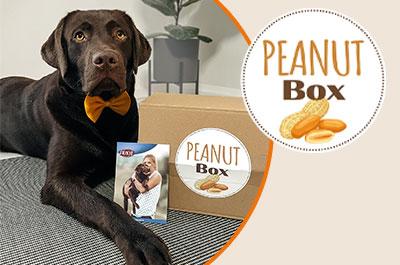 Peanut-Box für Hunde