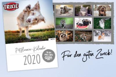 Petfluencer Kalender 2020