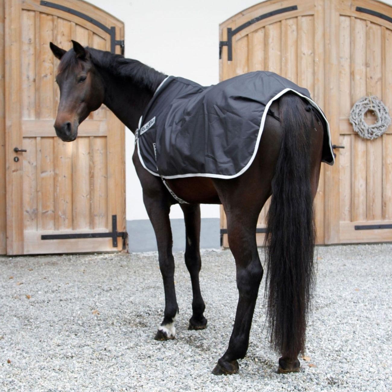 Pferde Führanlagendecken