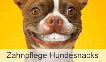 Zahnpflege Hundesnacks