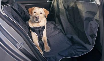 Auto Schondecken für Hunde