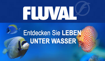 Fluval Aquariun Online Shop