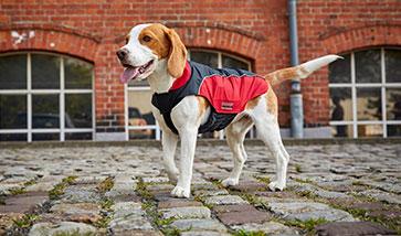 Hundebekleidung Hundemäntel