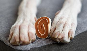 Hundesnacks und Leckerlis günstig
