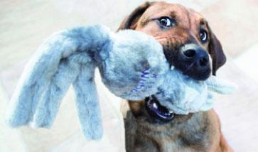 Hundespielzeug Shop