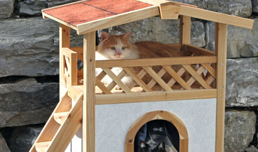 Katzenhäuser Outdoor Garten