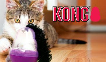 KONG Katzenspielzeug Online Shop