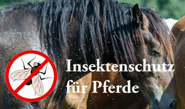 Pferde Insektenschutz