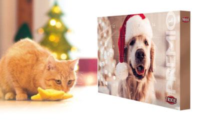 Weihnachten für Hunde, Katzen und Kleintiere