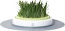 Catit Design Senses Gras-Garten-Set Katzengras 24 x 24 x 13 cm, 746 g
