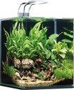 Dennerle NanoCube Aquarium 20 Liter