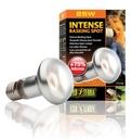 Exo Terra - Intense Wärmespotlampe 25 W